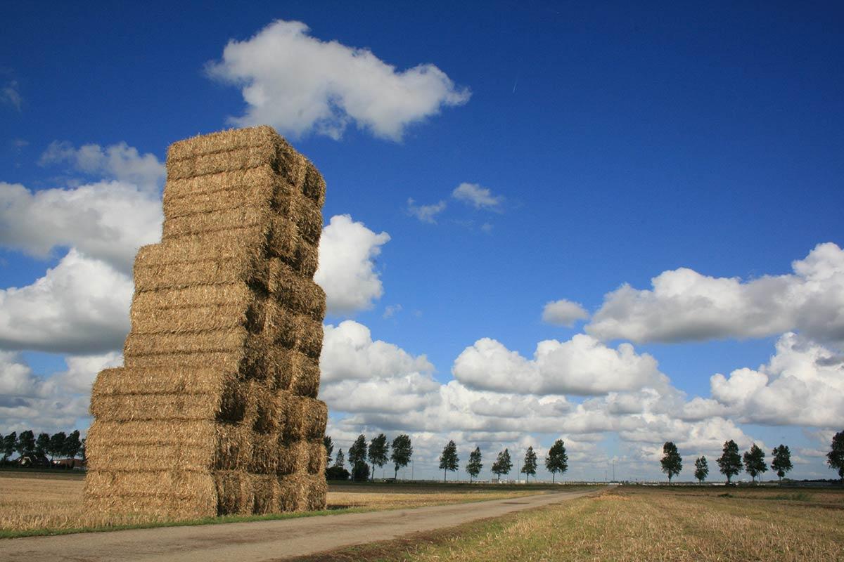 Landschapsfotografie Haarlemmermeer Hoofddorp