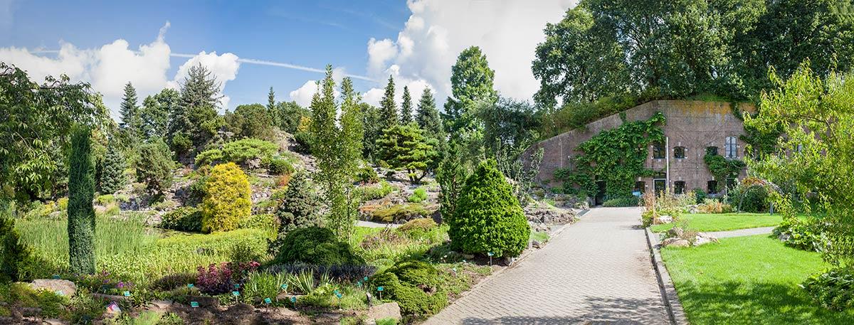 Foto Botanische Tuinen Utrecht workshop fotografie