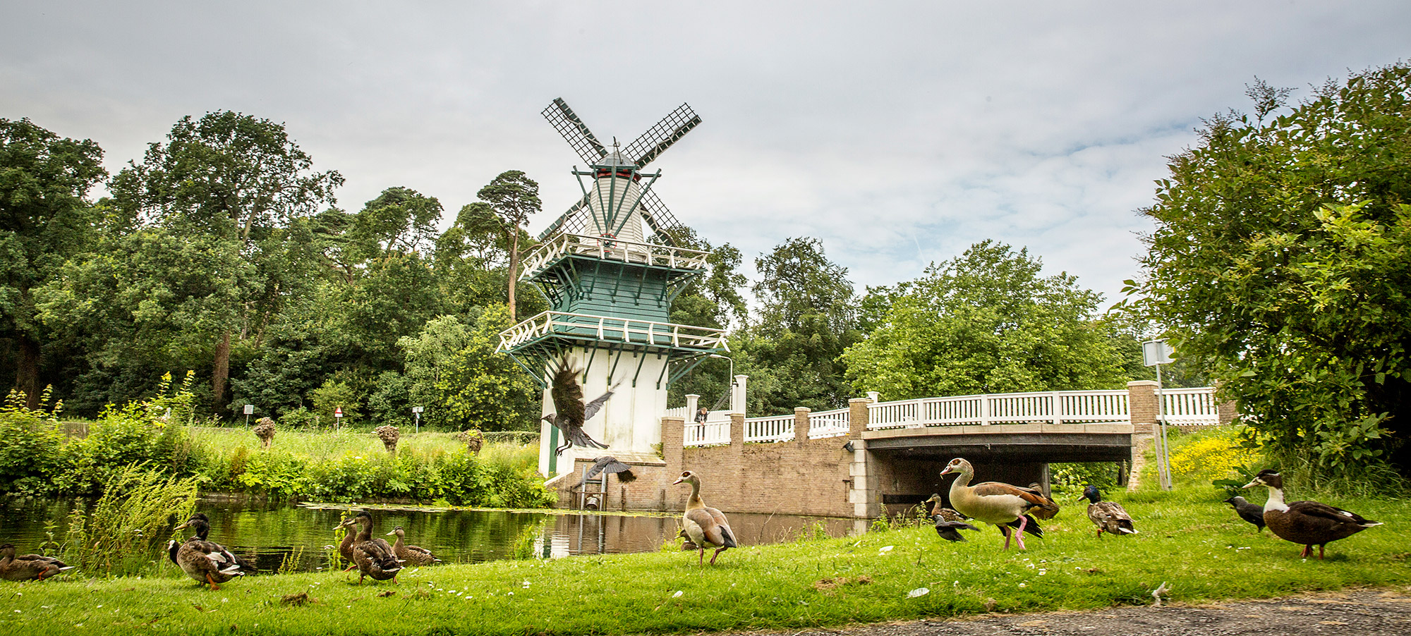 fotografie cursus workshop Groenendaal Heemstede