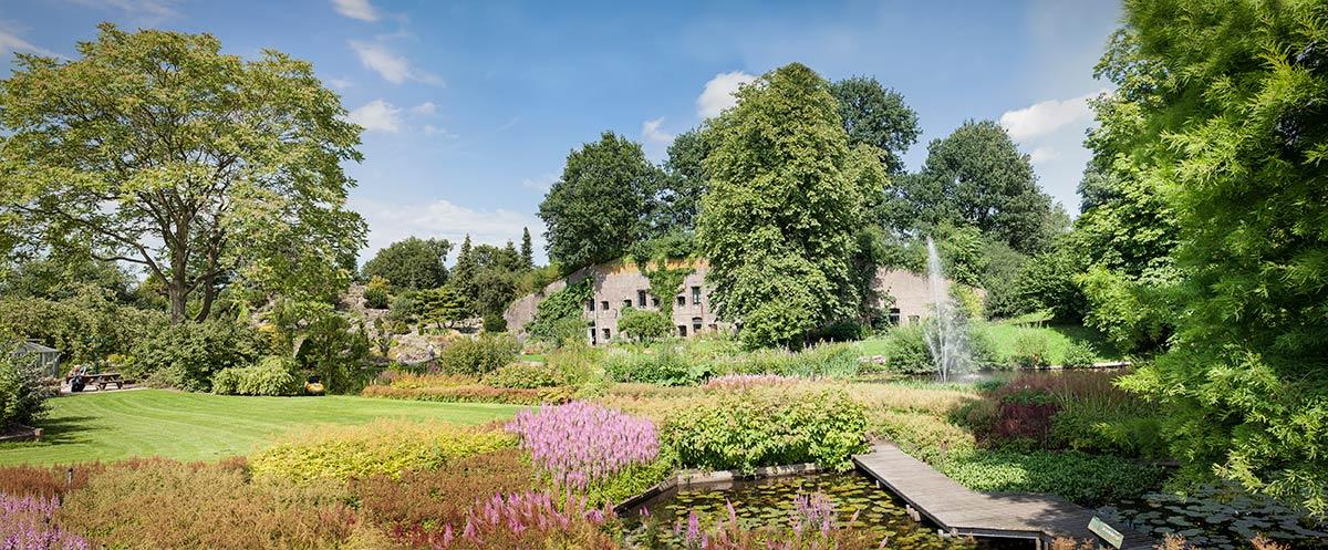 panorama foto Botanische tuinen Utrecht fotografie
