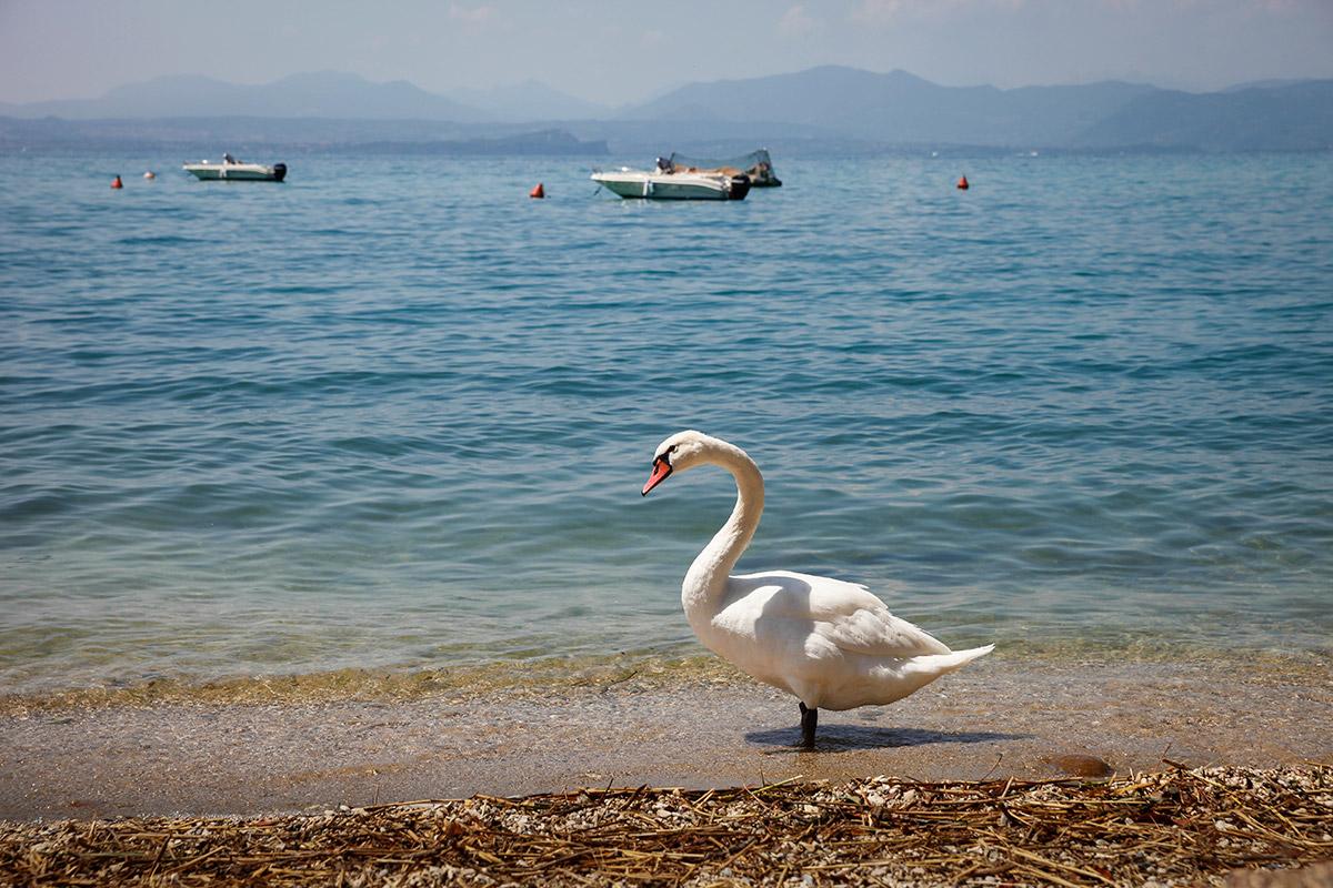 nieuwe camera vakantie tip workshop fotografie fotocursus spiegelreflex