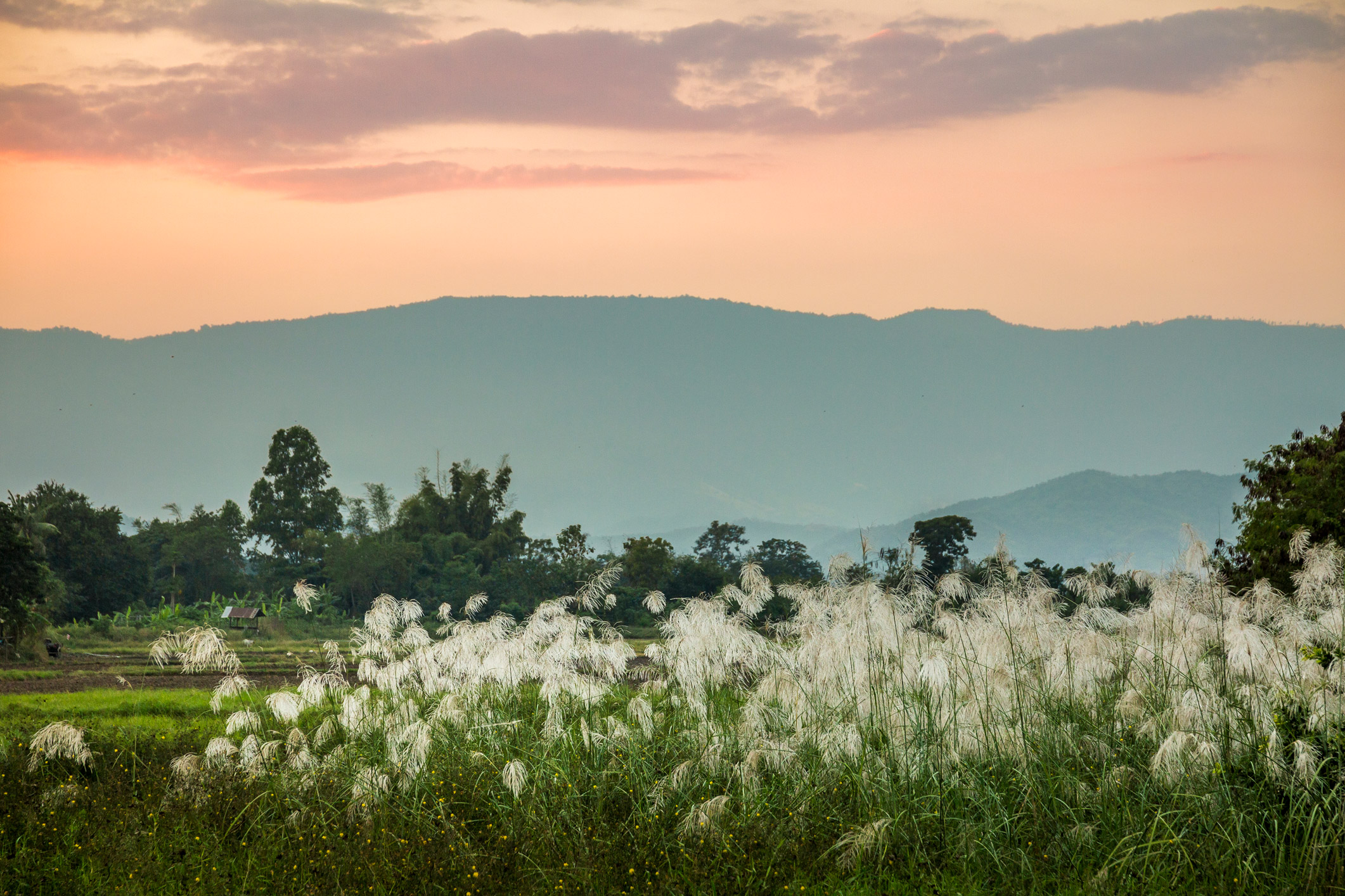 landschap Noord-Thailand
