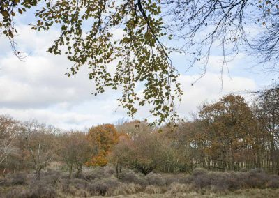 workshop_duinen_0043